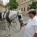Our horse and driver and Sevilla